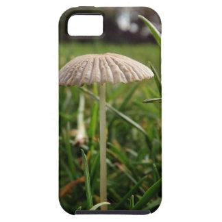 Shroom iPhone 5 Cases