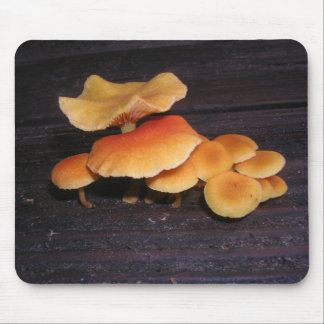 'shrooms if you please mouse pad