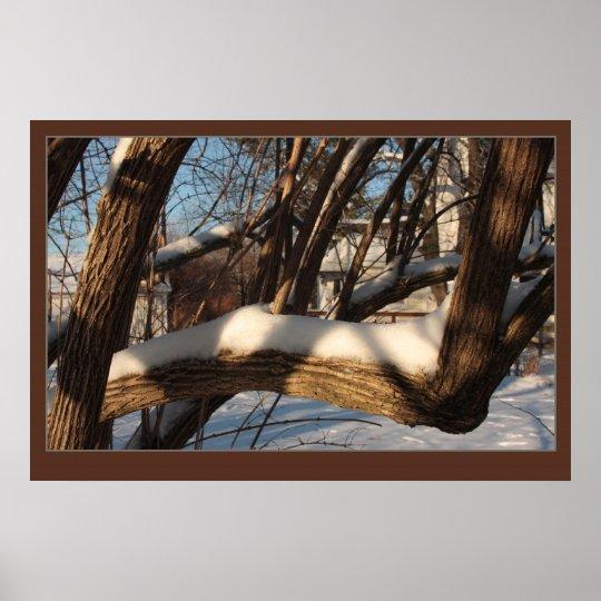 Shrouded Branch Poster