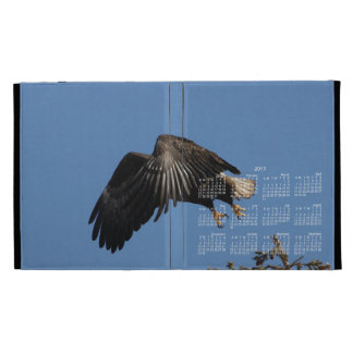 Shrouded by Wings; 2013 Calendar iPad Folio Covers