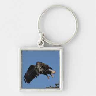 Shrouded by Wings Keychains