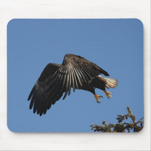 Shrouded by Wings Mousepads