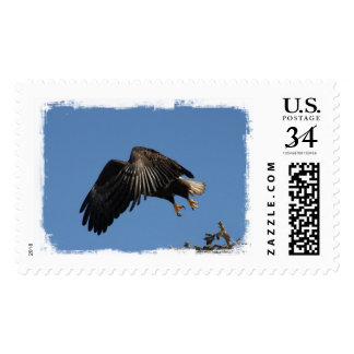Shrouded by Wings Postage