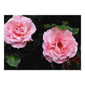 Shrub Rose Yellow flowers Custom Invite