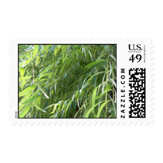 Shrubbery Postage