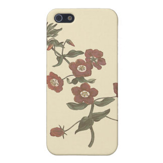 Shrubby Pimpernel Botanical Illustration Cover For iPhone SE/5/5s