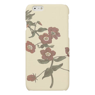 Shrubby Pimpernel Botanical Illustration Matte iPhone 6 Case