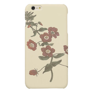Shrubby Pimpernel Botanical Illustration Matte iPhone 6 Plus Case