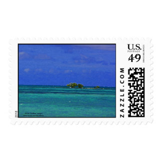 Shrubs on the Florida flats - postage stamp