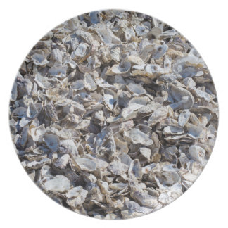 Shucked Oyster Shells Plate