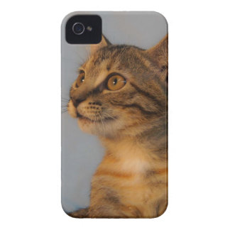 Shulla iPhone 4 Cover
