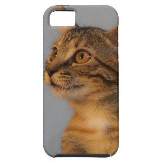 Shulla iPhone 5 Carcasas