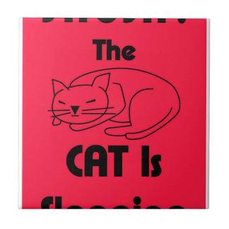 SHUSH! The Cat Is Sleeping Ceramic Tile