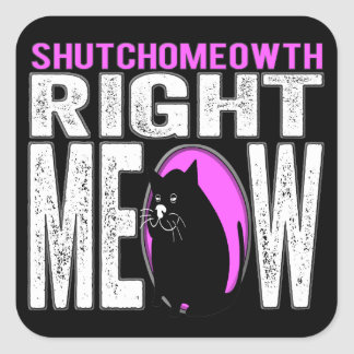 Shut Your Mouth - Right MEOW! Kitty Speaks Square Sticker