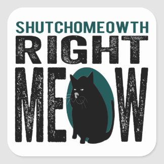 ShutchoMEOWth Right Meow - Funny Kitty Cat Square Sticker