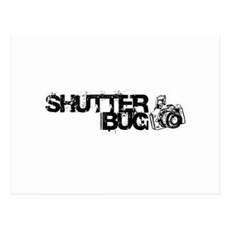 Shutter Bug Postcard