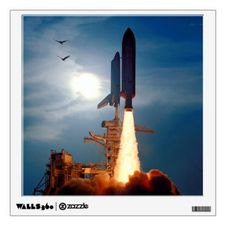 Shuttle Discovery Launch STS-64 Wall Skins