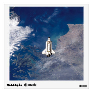Shuttle Endeavour STS-113 Room Graphics