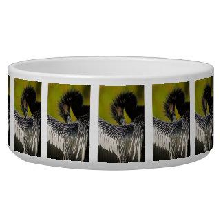 Shy Anhinga Pet Food Bowl