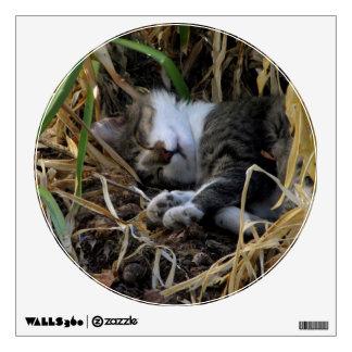 Shy Boy Sleeping Cat Wall Decal Pt. 1
