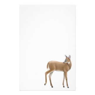 Shy Doe Stationery