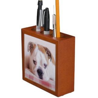 Shy English Bulldog Puppy Pencil/Pen Holder