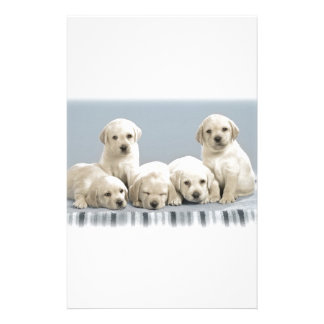 Shy Golden Retriever Puppies Stationery
