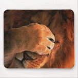 Shy Lion Paw Animal Mouse Pad