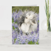 Shy Lupine Mare Horse Greeting Card
