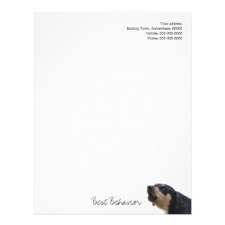 Shy, nervous and worried dog letterhead
