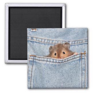 shy peekaboo magnet