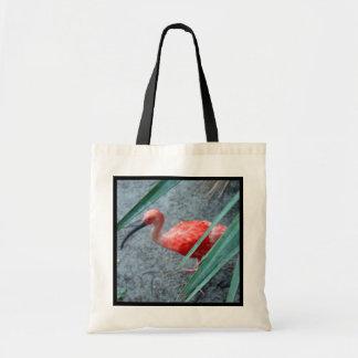 Shy Scarlet Ibis Canvas Bags