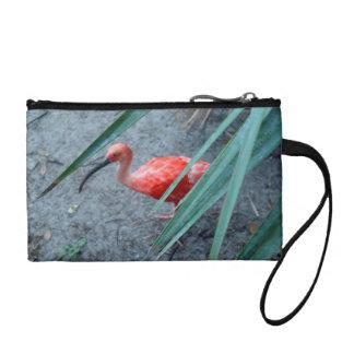 Shy Scarlet Ibis Coin Wallet