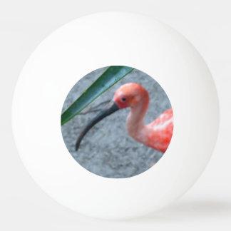 Shy Scarlet Ibis Ping-Pong Ball