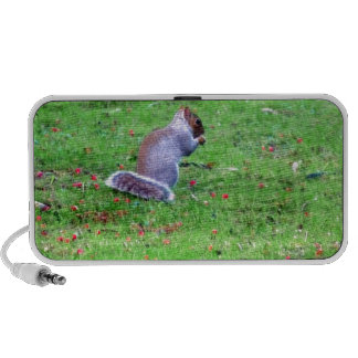 Shy Squirrel Portable Speakers