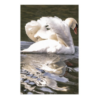 Shy Swan Stationery