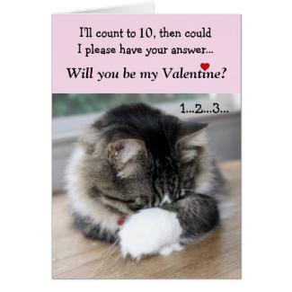 Shy Valentine Kitty Card