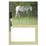 Shy White Horse Memo Board Dry Erase Whiteboard