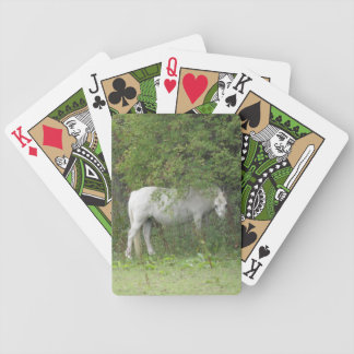 Shy White Horse Playing Cards
