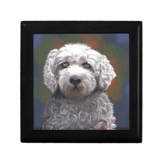Shyanne Bichon Frise/ King Charles Cavalier Gift Box
