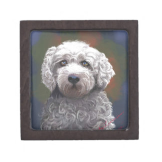 Shyanne Bichon Frise/ King Charles Cavalier Jewelry Box