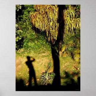 si cae una sombra… póster