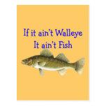 si él pescados del aint de los leucomas del aint tarjeta postal