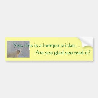 Sí, esto es un sticke de parachoques… pegatina para auto