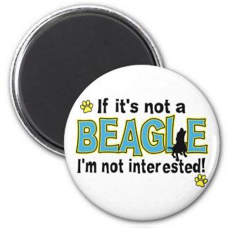 Si no es un beagle iman para frigorífico