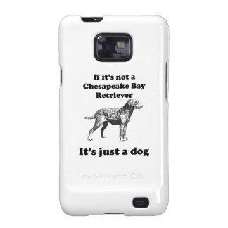 Si no es un perro perdiguero de bahía de Chesapeak Samsung Galaxy SII Carcasas