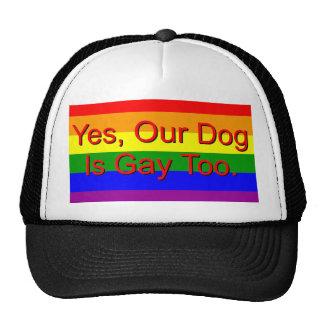 Sí, nuestro perro es gay también gorro de camionero