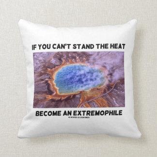 Si usted no puede colocar el calor se convierte un cojín