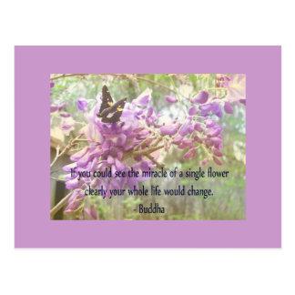 Si usted podría ver el milagro de una flor. - Buda Tarjeta Postal