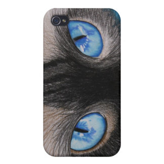 Siam Eyes iPhone 4 Cases
